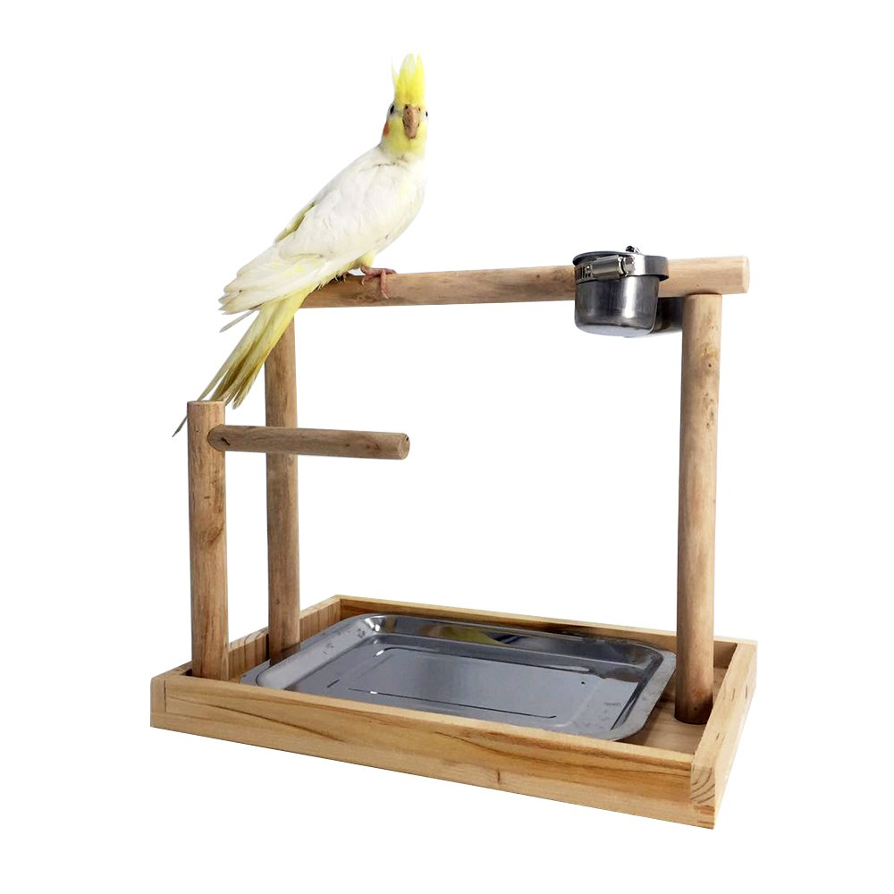 Borangs Parrot Playstand Bird Playground Wood Perch Gym Training Stand Playpen Bird Toys Exercise Playgym for Parakeet Conure Cockatiel Small Birds Cage Accessories Exercise Toy (Include a Tray) by Borangs