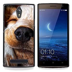 Ihec Tech Perro Terrier Jack Russell Labrador Retriever / Funda Case back Cover guard / for OPPO Find 7 X9077 X9007