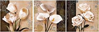 pu ran- -- senza cornice 3pezzi Wall Art fiore dipinti poster Home soggiorno decorazione, As Show, 35cm x 35cm