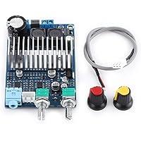 DC12-24V TPA3116 Subwoofer Tarjeta de amplificador digital Tablero