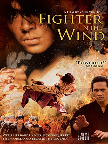 - Fighter in the Wind
