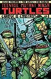 Teenage Mutant Ninja Turtles Vol. 1: Change is Constant