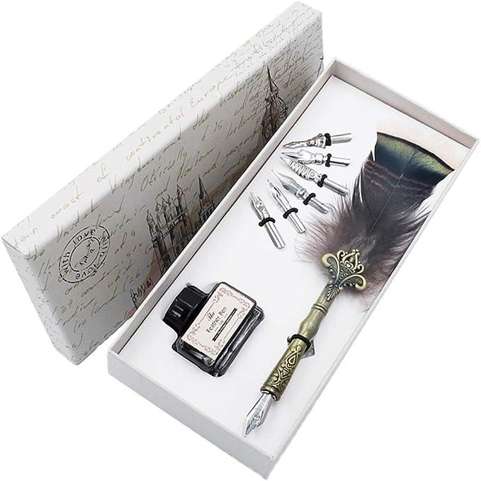Conjunto de Pluma,Plumas Estilográficas,6 puntas de acero inoxidable en caja de regalo HO-Q-302: Amazon.es: Oficina y papelería