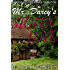 Mr. Darcy's Stolen Love: A Pride and Prejudice Regency Variation