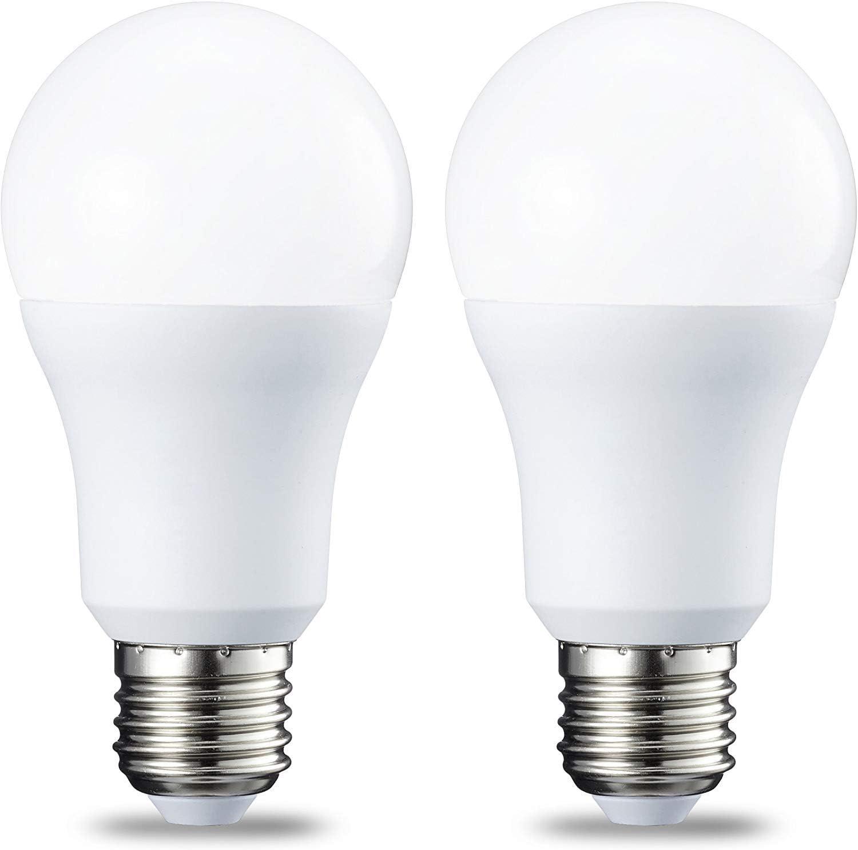 AmazonBasics Bombilla LED Esférica E27, 10W (equivalente a 75W), Blanco Frío - 2 unidades