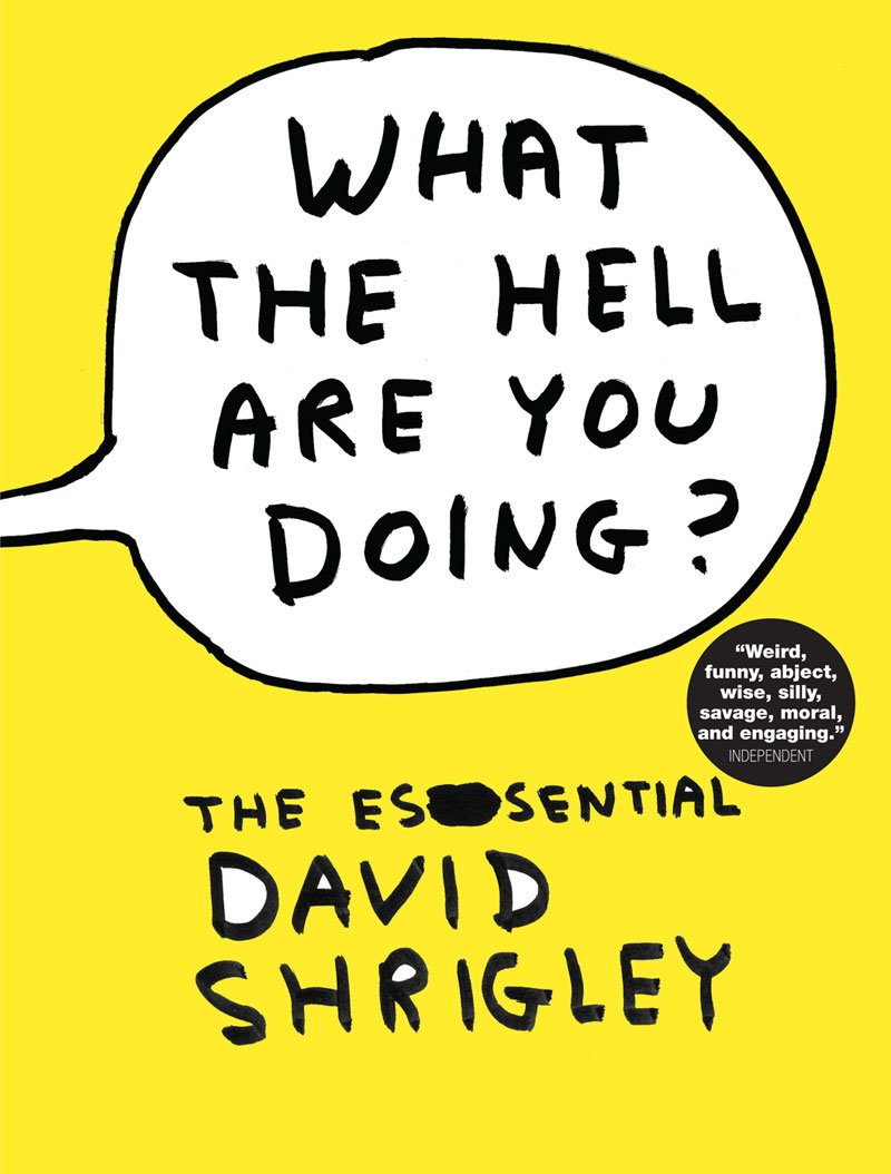Download What the Hell Are You Doing?: The Essential David Shrigley pdf