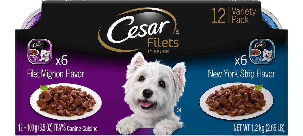 CESAR GOURMET FILETS Variety Pack Filet Mignon & New York Strip Flavor Dog Food (Five – 12 Count)