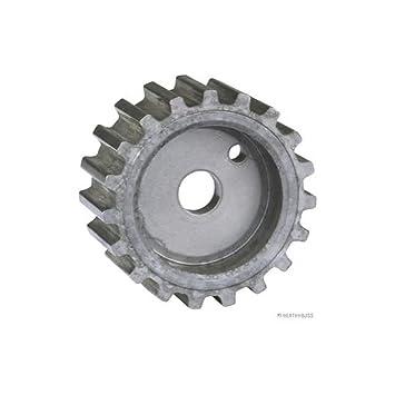 JAKOPARTS j1143033 Tensor de Polea Correa de distribución Kit: Amazon.es: Coche y moto