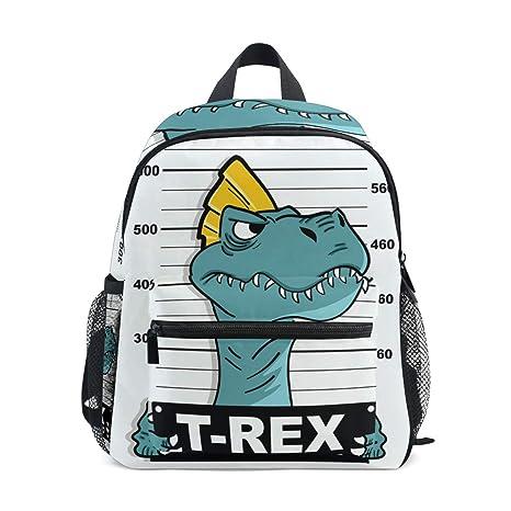Sac à Dos Dinosaure T Rex De Dessin Animé Pour Fille Garçon Sac Décole Maternelle Enfant Mini Sac De Voyage Sac à Dos école Primaire étudiant