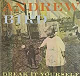 Break It Yourself (Deluxe DVD Edition)