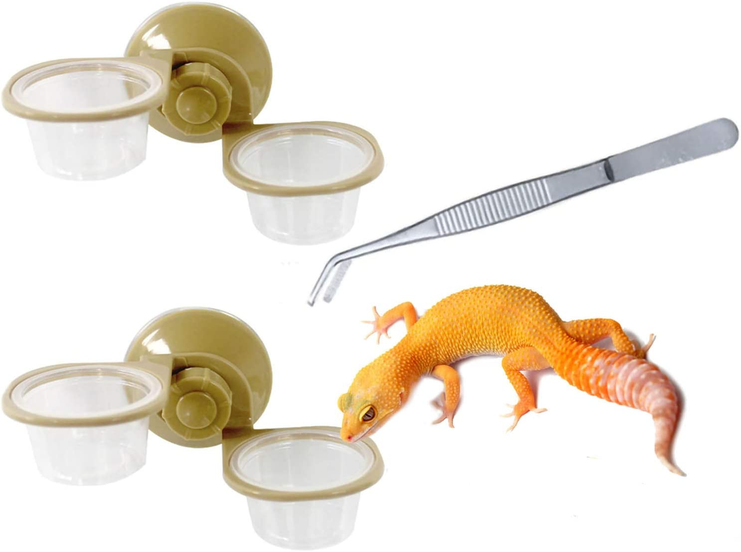 Hamiledyi Gecko Feeder Ledge,Reptile Feeding Cup with Suction Cup Food Dish for Snakes Lizards Spiders Chameleons Corn Snakes Iguanas,with Feeding Tongs