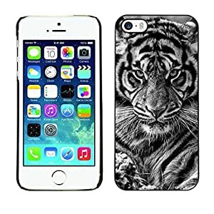 TaiTech / Hard Protective Case Cover - Cub Baby Black White Cat - Apple iPhone 5 / 5S