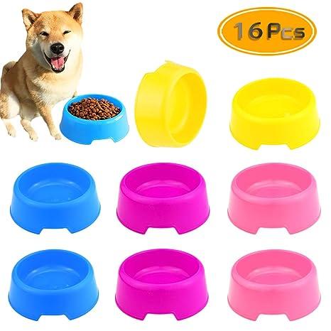 Amazon.com: BcPowr 16 cuencos de plástico para mascotas para ...