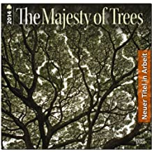 Majesty of Trees, The 2015 Square 12x12