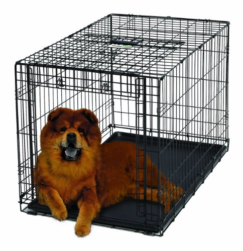 Ovation Folding Dog Crate
