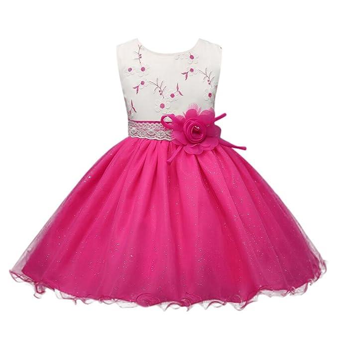 Vestito per Ragazze Abito Principessa Bambina Rosa Fiore-Applique Fusciacca Abiti  Principessa Formale Pageant Vacanza 71b296713fc