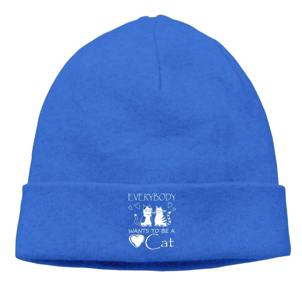 Everybody Wants to Be A Cat Skull Caps Beanie Hat Unisex RoyalBlue