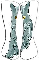 """Jxrodekz Deportes al Aire Libre Hombres Mujeres Calcetines Altos Medias British Shorthair Gato Azul Mentiras Apariencia Longitud del azulejo 19.7""""(50cm)"""