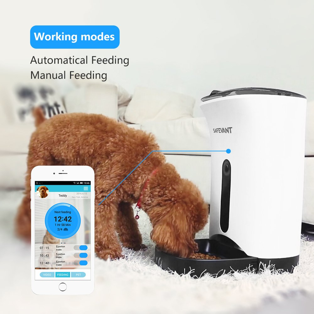 Amazon.com: SAFEVANT Wireless Automatic Smart Pet Feeder with HD Wifi  Camera With Two-Way Audio and Video Recording: Pet Supplies