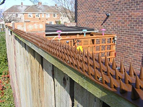 3 Metros en Piezas de 50cm Pinchos Anti-aves y anti-gatos 10 Polipropileno anti UV (beige): Amazon.es: Bricolaje y herramientas
