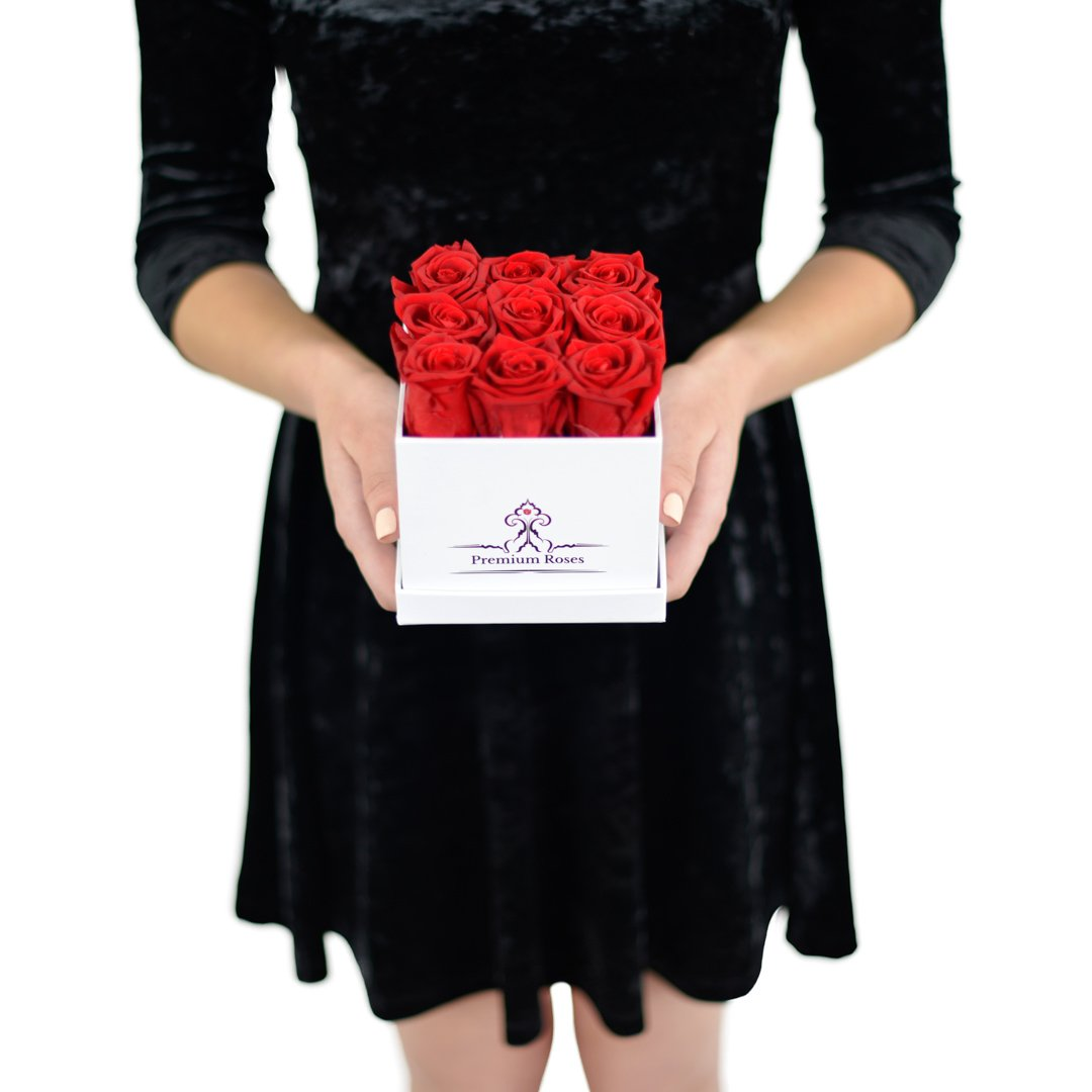 Real Roses that can Last A Year| Starry Night in the Tropics (Small, Red) Mahd Enterprise