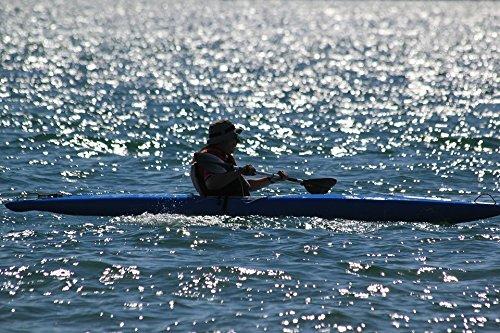 TED POSTER Oar Canoe Water Poster 24x36 Decal (Laminated Oar)