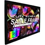 Elite Screens Ceiling and Ambient Light Rejecting Fixed Frame Projector Screen Sable Frame CineGrey 3D, 120-inch Diagonal 16:9 for Home Theater, Movie and Office Presentations, ER120DHD3