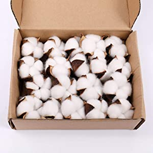Darget Cotton Balls Decor - 20 Pieces for Wreath Decor Dried Cotton Bolls (Balls) Made of Natural Cotton Great for Crafting Farmhouse Style