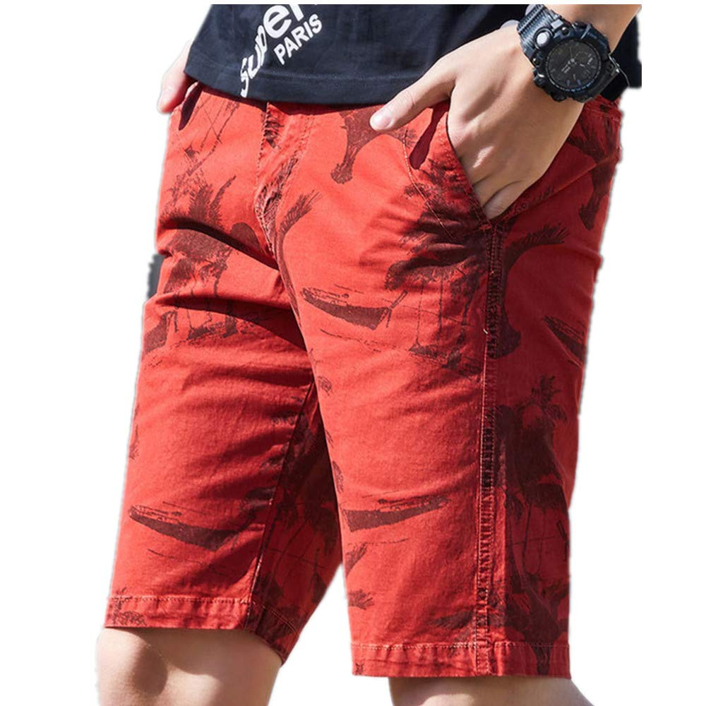 Soluo Men's Shorts Printed Quick Dry Lightweight Stretch Cargo Short Training Shorts Athletic Pants Oxford Short (Red wine,33)
