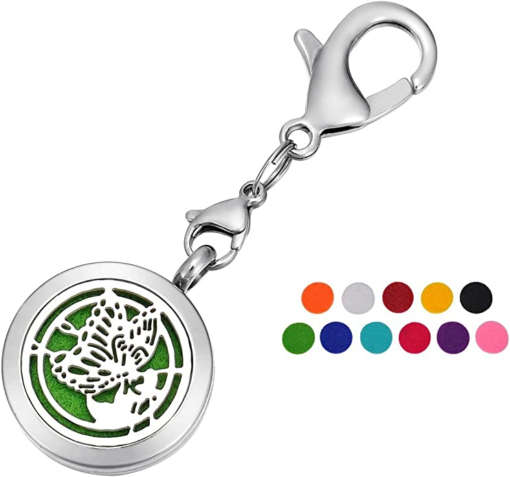 HOUSWEETY Aromatherapy Essential Oil Diffuser Necklace Keychain Key Ring Locket Jewelry with 11 Refill Pads
