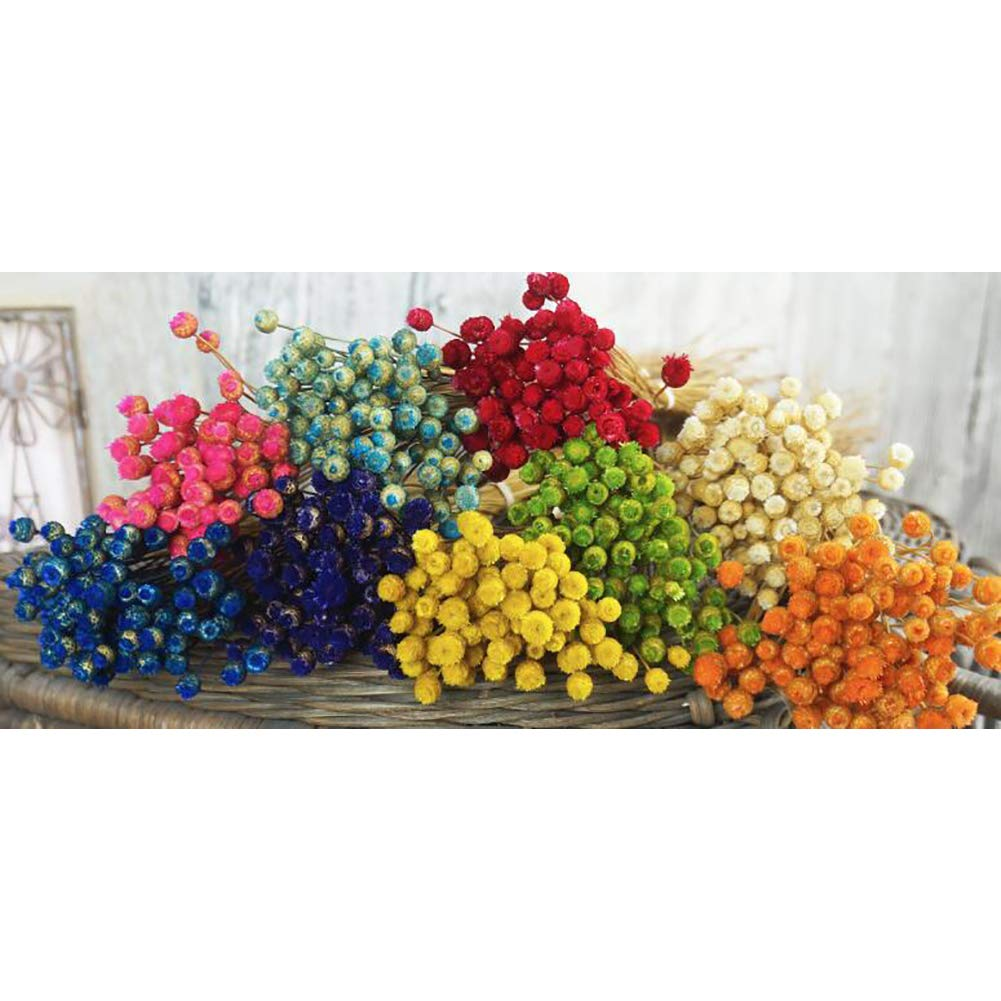 Set Home Decor Naturale Bouquet di Fiori secchi Fiori secchi Decorativi per la Decorazione in Vaso Wedding Party Puntelli Fotografia Arancione lujiaoshout 50pcs