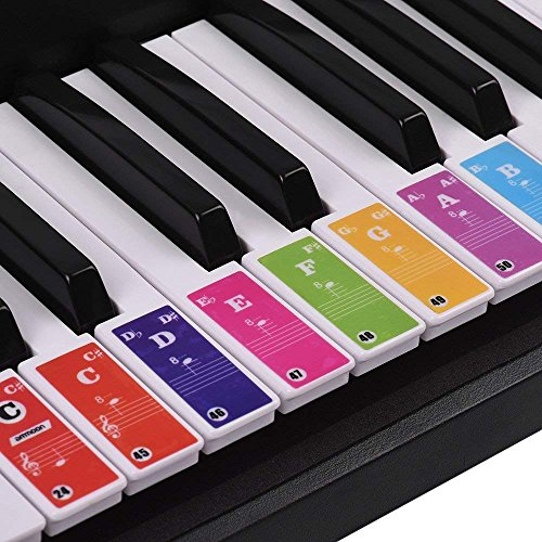 ammoon Piano Keyboard Stickers for 37/49/61/88 Key Keyboards Removable Colorful for Kids Beginners Piano Practice Learning
