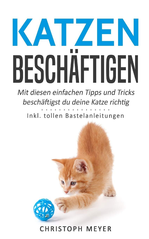 Katzen Beschäftigen  Mit Diesen Einfachen Tipps Und Tricks Beschäftigst Du Deine Katze Richtig   Inkl. Tollen Bastelanleitungen  Katzen Trainieren Band 4