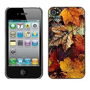 [Neutron-Star] Snap-on Series Teléfono Carcasa Funda Case Caso para iPhone 4 / 4S [Decay otoño en colores pastel amarillo]