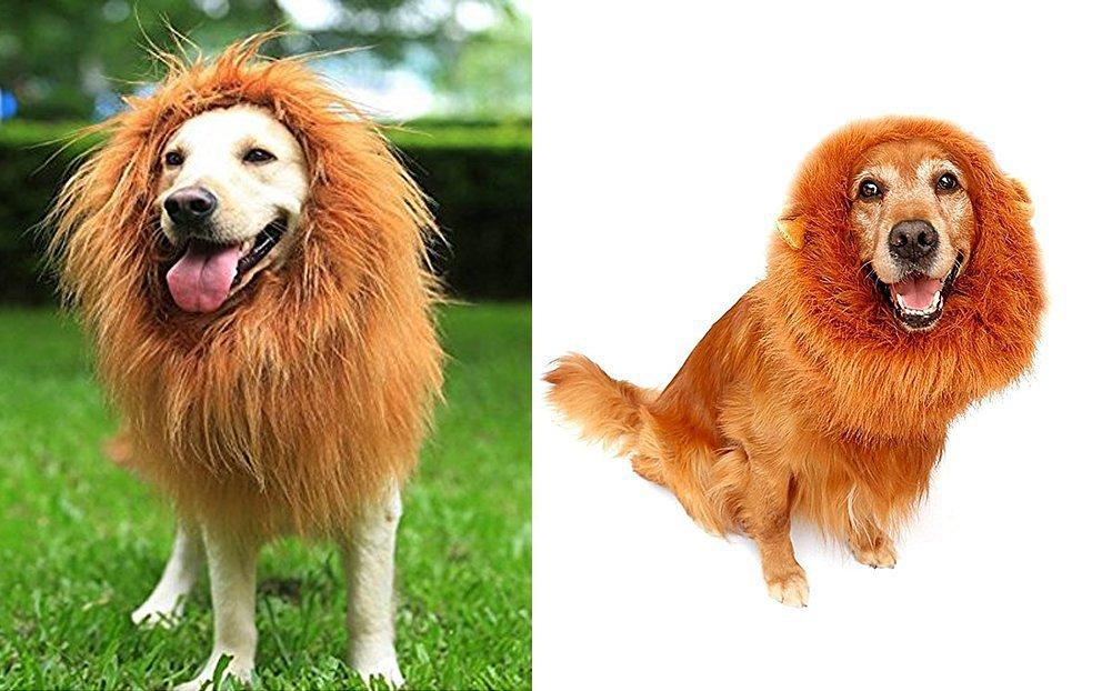 looching 2 pcs León melena Prank disfraz grande perro león Mane ...