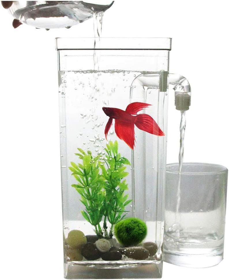 Ewendy Self Cleaning Fish Tank Aquarium with LED Light Self Cleaning Aquarium with Rocks/& Aquatic Plant