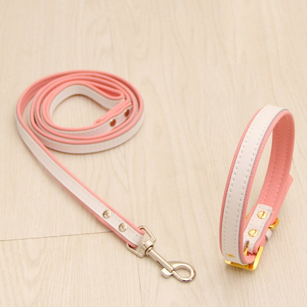 White M White M ZH Pet Harness, Leash, Dog Chain, Small Dog, Hyena Rope, Dog Collar, Pet Supplies (color   White, Size   M)