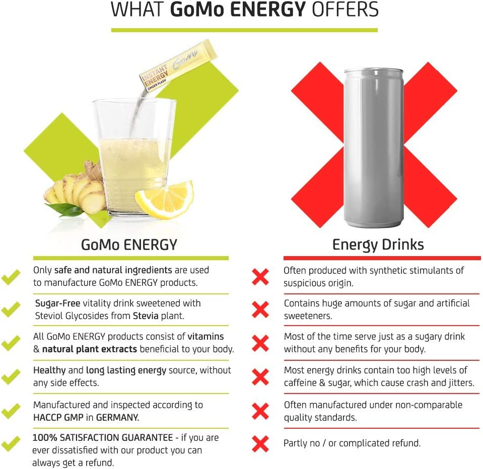 GoMo ENERGY 100% Natural Ginger Ale Vitality Drink |Highly dosed Ginger Extract, Caffeine, Magnesium, Zinc, Inositol & Vitamin B Complex | Sugar Free Energy Drink Powder Mix | GINGER FLASH 30 Servings