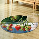 Small round rug Carpet selective focus fresh strawberries that are grown in greenhouses  door mat indoors Bathroom Mats  Non Slip -Round 63''