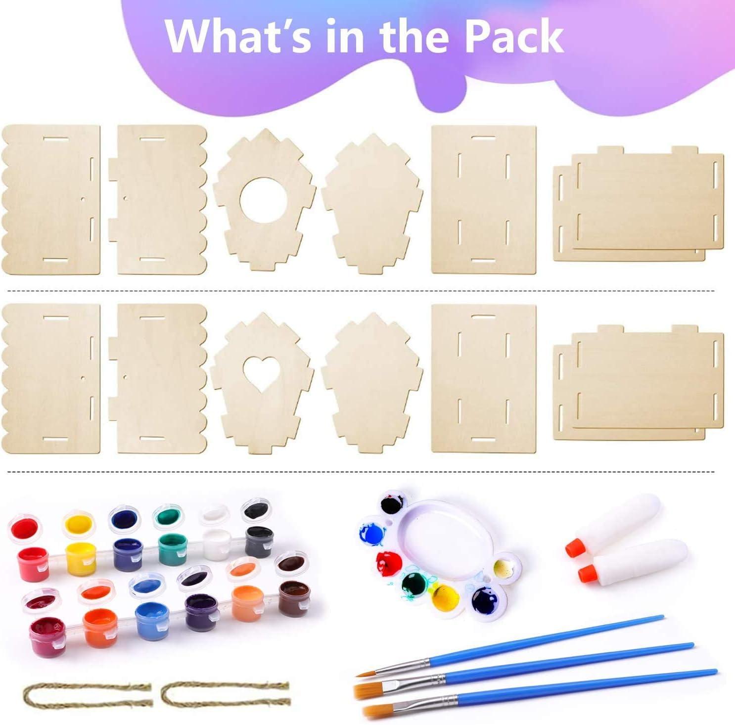 Kit Fai da Te per la casa degli Uccelli 2Pack xinxintai Artigianato per Bambini dai 4-8 Anni Costruisci e dipingi Le Casette degli Uccelli in Legno