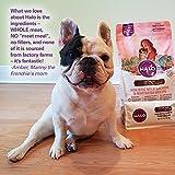 Halo Grain Free Natural Dry Dog Food, Surf & Turf