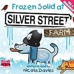 Frozen Solid at Silver Street Farm | Nicola Davies