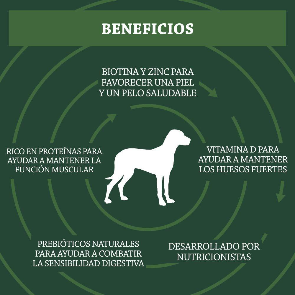 Beneficios de pienso para perros Solima