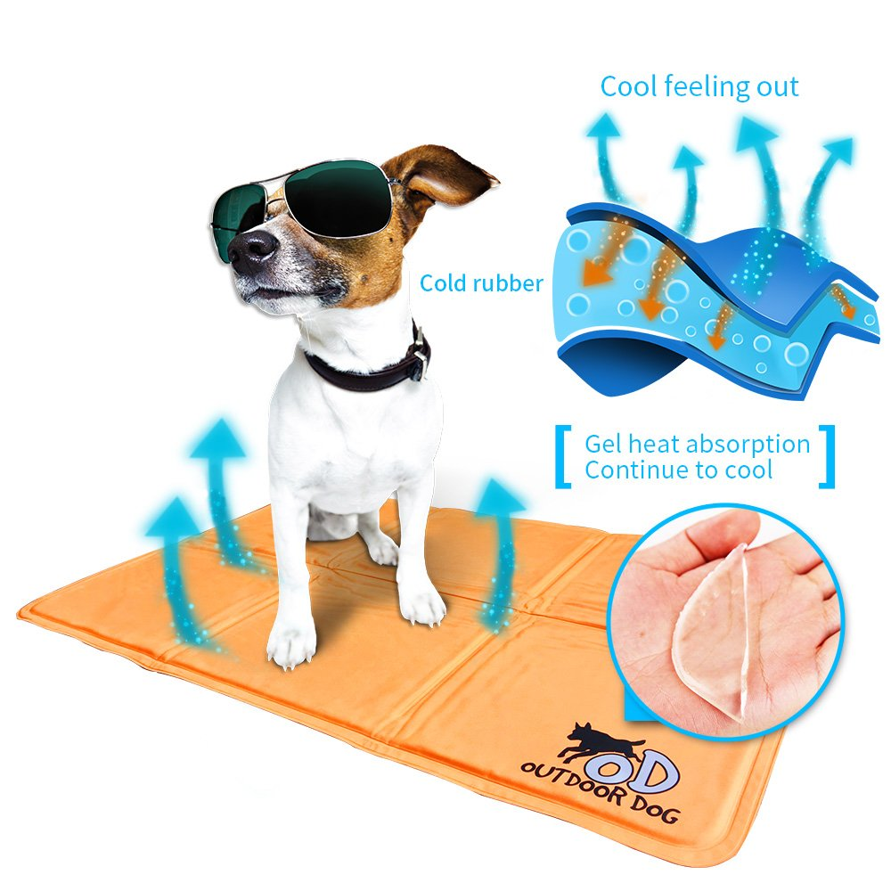 ALL FOR PAWS Pet Cool Mat Cool Dog Mat Cooling Pad Dog Bed Mat-M(Orange)