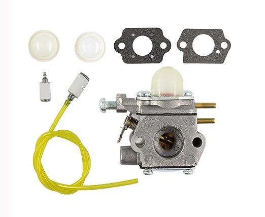 XtremeAmazing 753 - 06190 carburador con imprimación ...