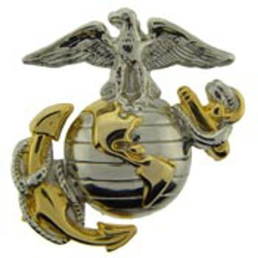 amazon com us marine corps emblem e2 left cap gold silver usmc
