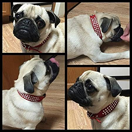 6b4c8d02a02d Namsan cuir Puppy Dog Pet Doggie Chats Colliers Colliers Avec Bling Crystal  (noir, bleu, rose, rouge, rose) -Petit-Rose  Amazon.fr  Animalerie