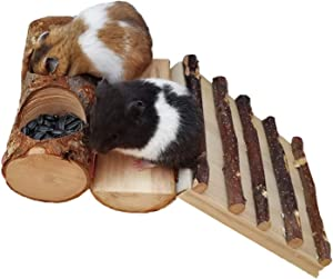 3 in 1 Hamster Wooden Feeding Set, Small Pets Apple Branch Chewing Toys with Ladder, Food Bowls and Platform for Birds, Parrot, Sugar Glider, Chinchilla, Mouse, Gerbil, Pet Teeth Grinding Supplies