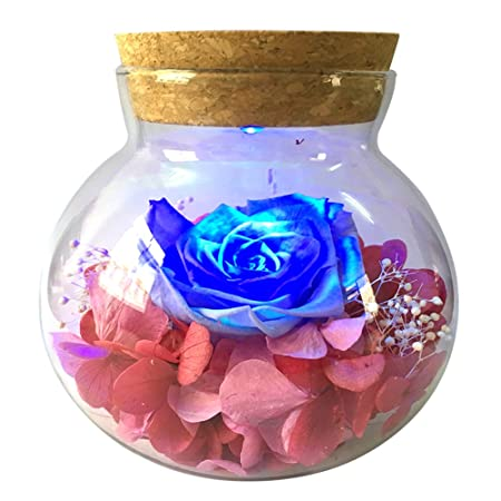 Jiuhuazi eternal flowers wishing bottle preserved by real rose with jiuhuazi eternal flowers wishing bottle preserved by real rose with colorful led mood light for bedroom junglespirit Images