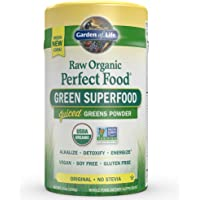 Garden of Life Vegan Green Superfood Powder - Raw Organic Perfect Whole Food Dietary Supplement, Original, 7.4oz (209g) Powder